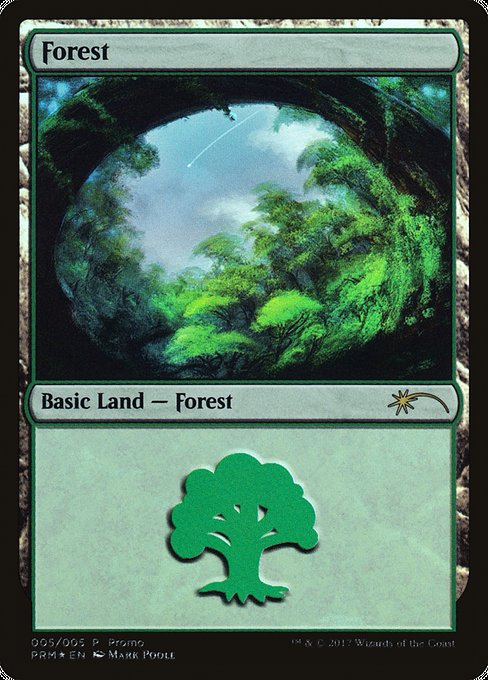 Forest (G17)
