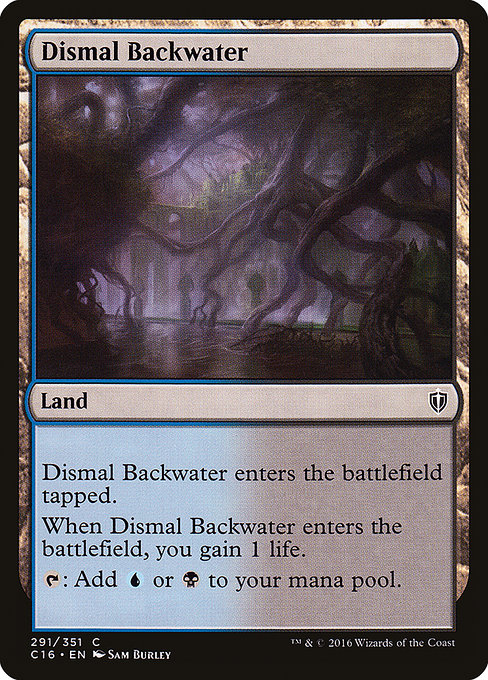 Dismal Backwater (C16)
