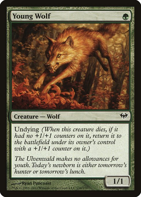 Young Wolf (DKA)