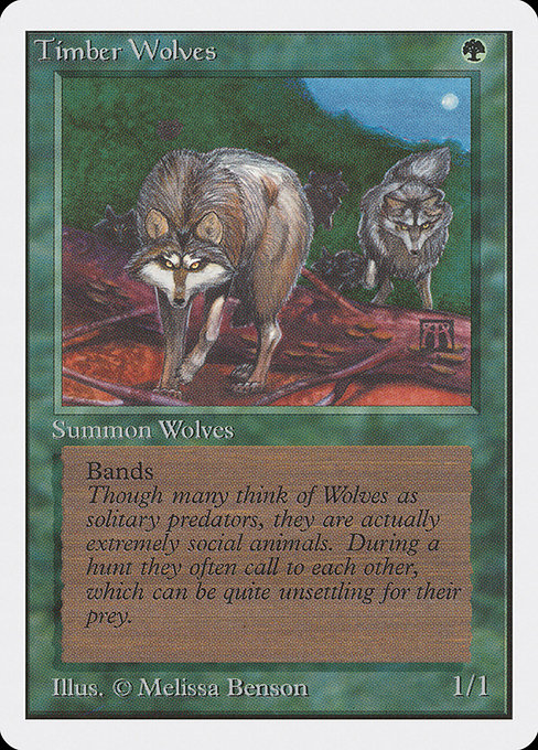 Timber Wolves (2ED)