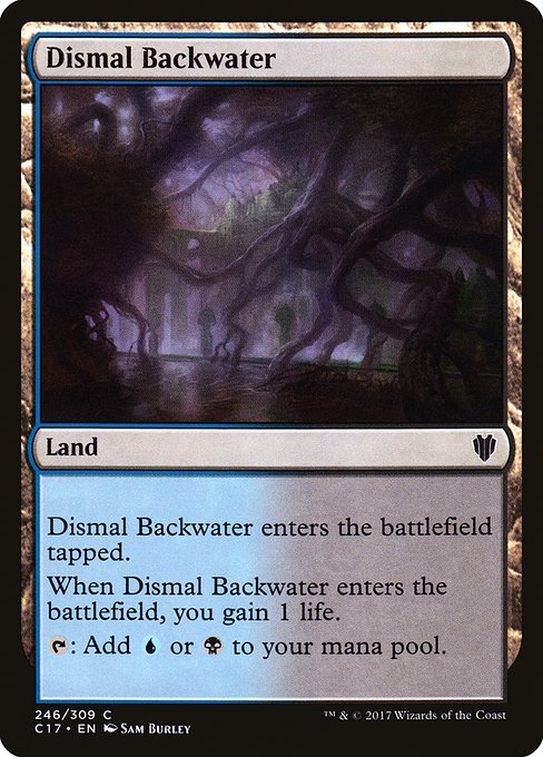 Dismal Backwater (C17)