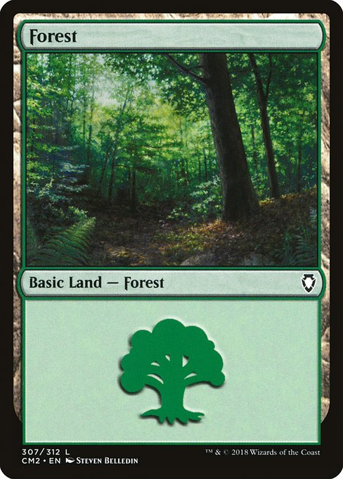 Forest (CM2)