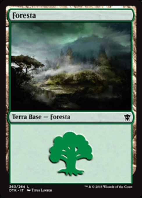 Forest (DTK)