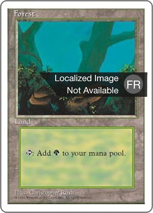 Forest (4ED)