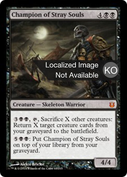 Champion of Stray Souls (BNG)