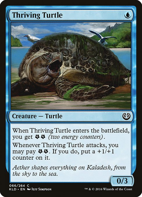 Thriving Turtle (KLD)
