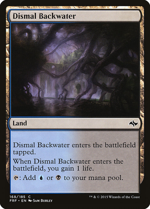 Dismal Backwater (FRF)
