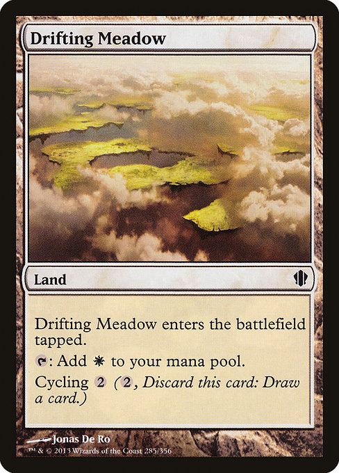Drifting Meadow (C13)