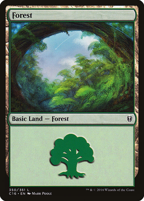Forest (C16)