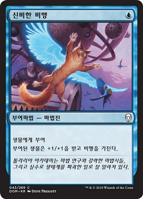 Arcane Flight (DOM)