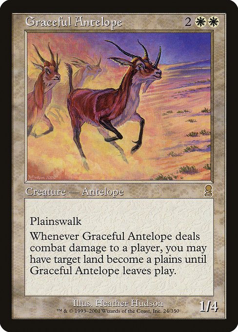 Graceful Antelope (ODY)