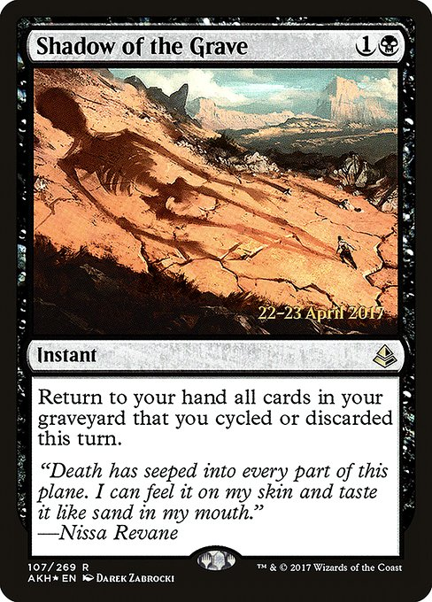 Shadow of the Grave (PAKH)