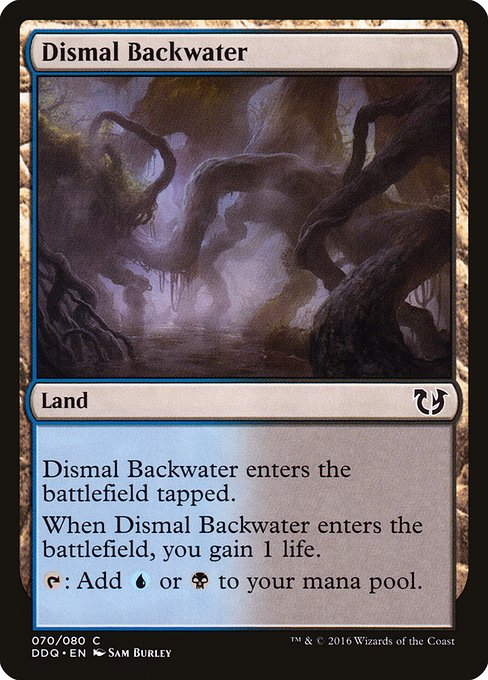 Dismal Backwater (DDQ)