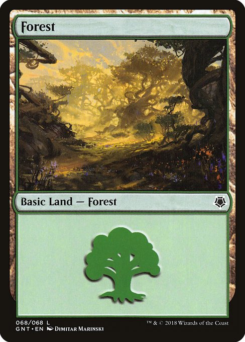 Forest - Game Night