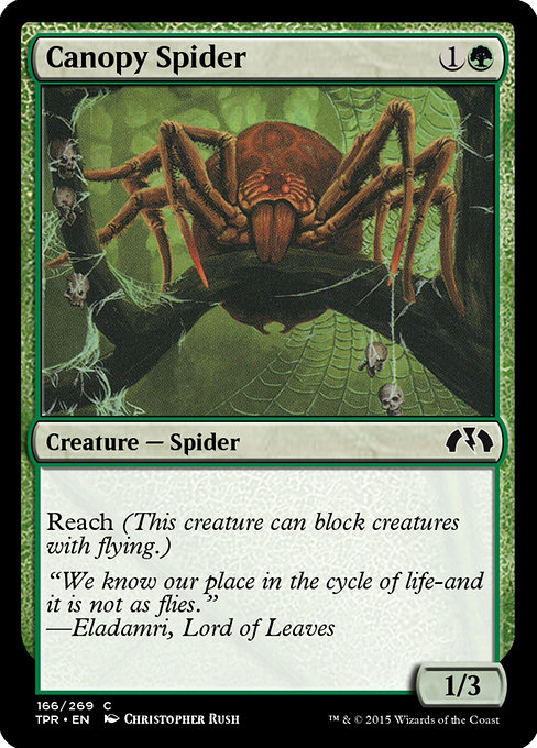 Canopy Spider (TPR)