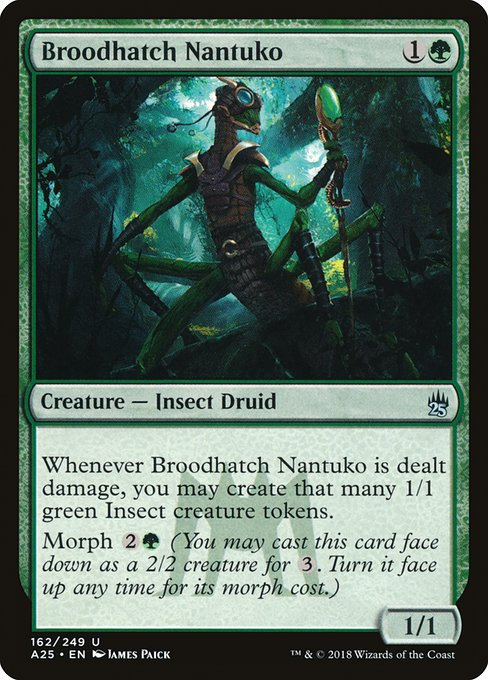 Broodhatch Nantuko (A25)