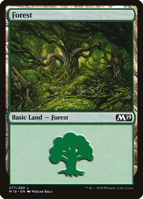 Forest (M19)