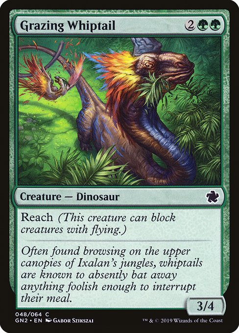 Grazing Whiptail (GN2)