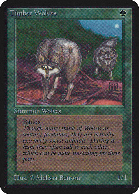 Timber Wolves (LEA)