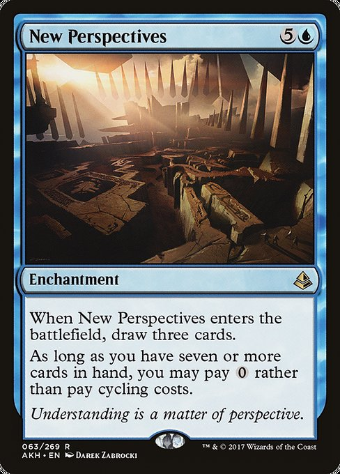 New Perspectives (AKH)