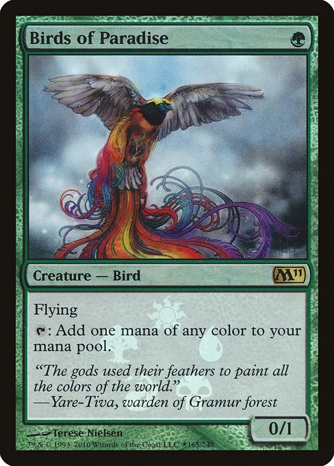Birds of Paradise (PM11)
