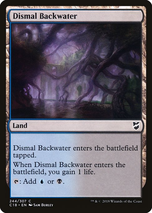Dismal Backwater (C18)
