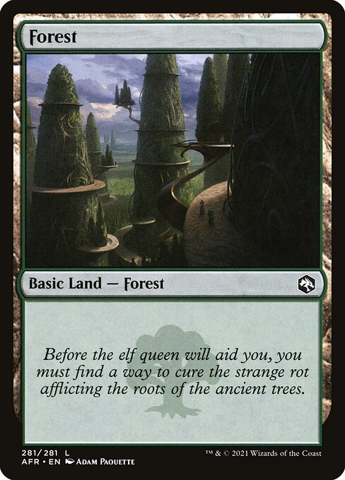 Forest - Adventures in the Forgotten Realms