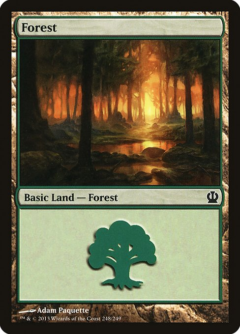 Forest (THS)