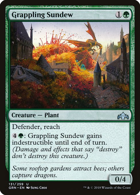 Grappling Sundew (GRN)
