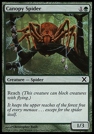 Canopy Spider (2, 1G) 1/3\nCreature  — Spider\nReach (This creature can block creatures with flying.)\nTenth Edition: Common, Eighth Edition: Common, Seventh Edition: Common, Tempest: Common\n\n